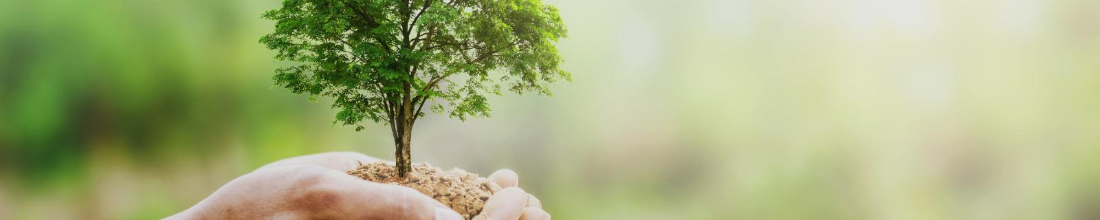 Unser Engagement für die Umwelt